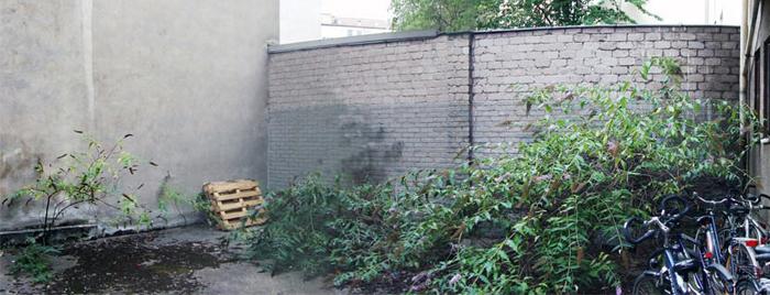 1_hinterhof