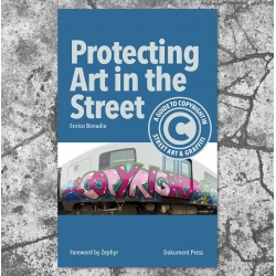 Protecting Art in the Street Buch