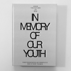 In Memory of our Youth Buch